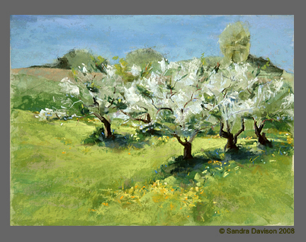 Early Spring Green with Apple Blossoms